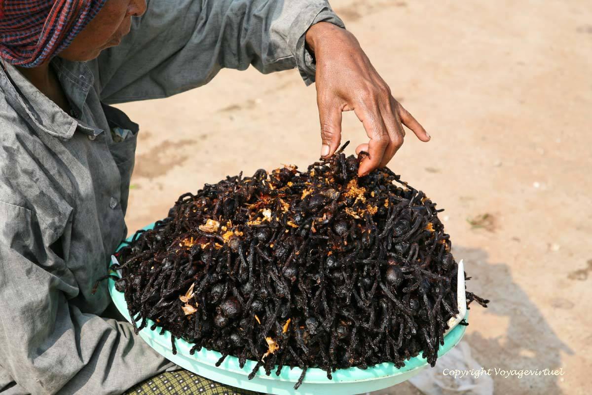 ara as alimenticios son buenos para la salud skun skuon camboya. Black Bedroom Furniture Sets. Home Design Ideas