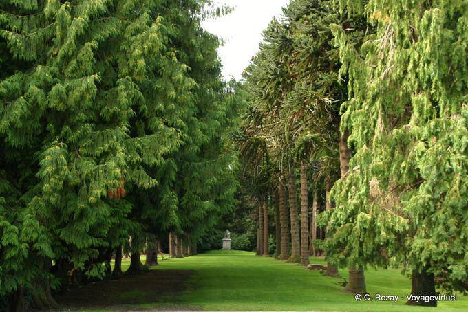 Jardin de Powerscourt, Irlande 5723