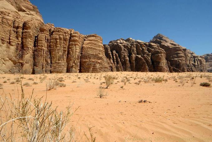 Wadi Rum 619