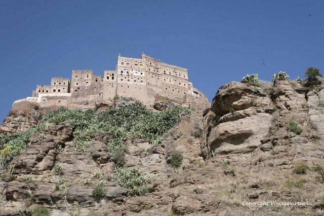 Laquamate Al Qadi 3654