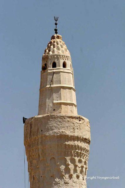 Tihama Zebid 3161a